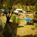 Snap Pea Jamboree 2013